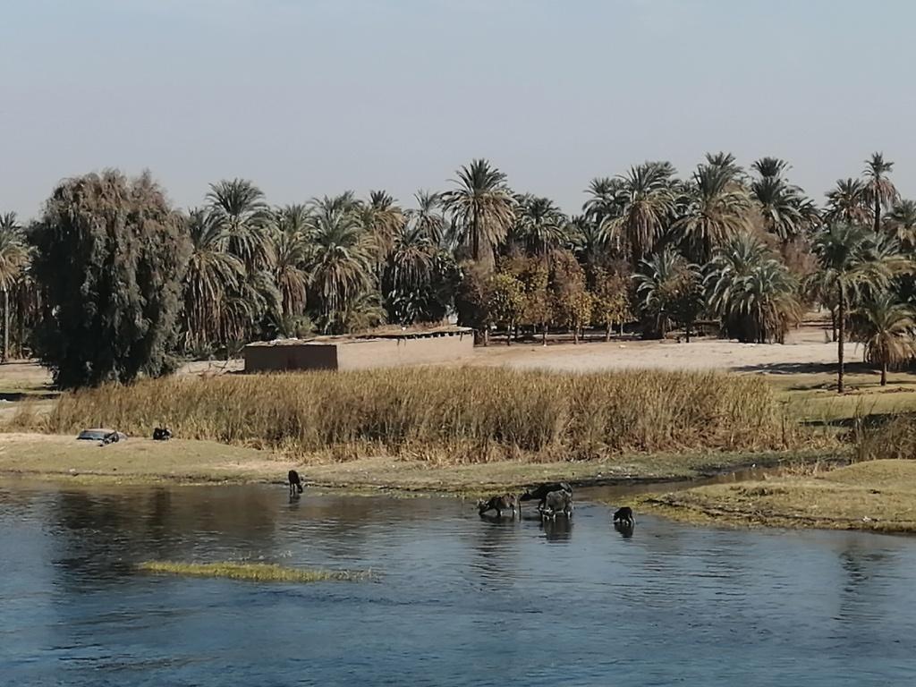 Río Nilo, Egipto