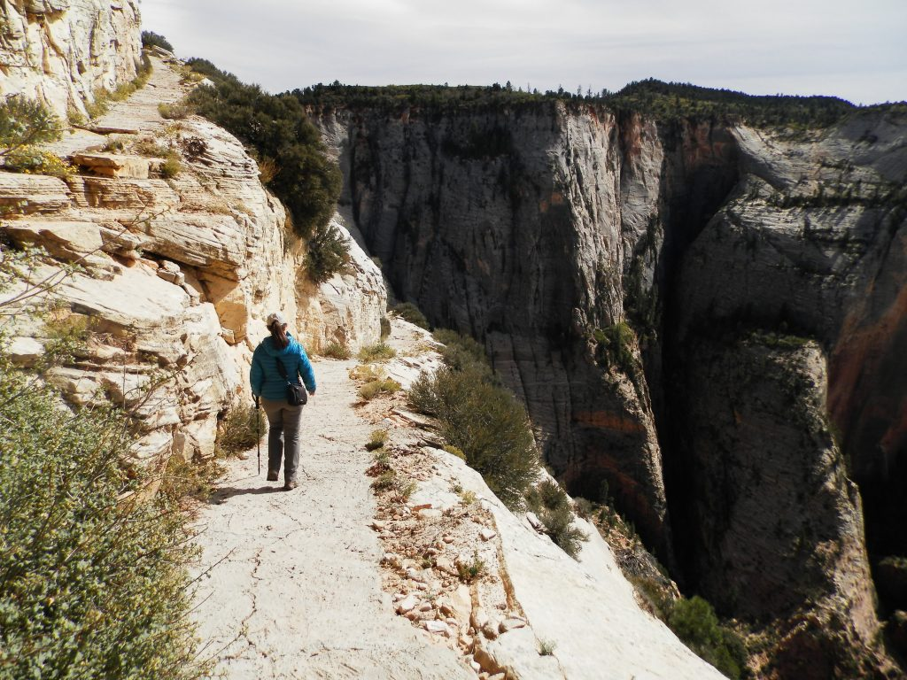 Tramo ligeramente expuesto en Observation Point Trail, Zion National Park