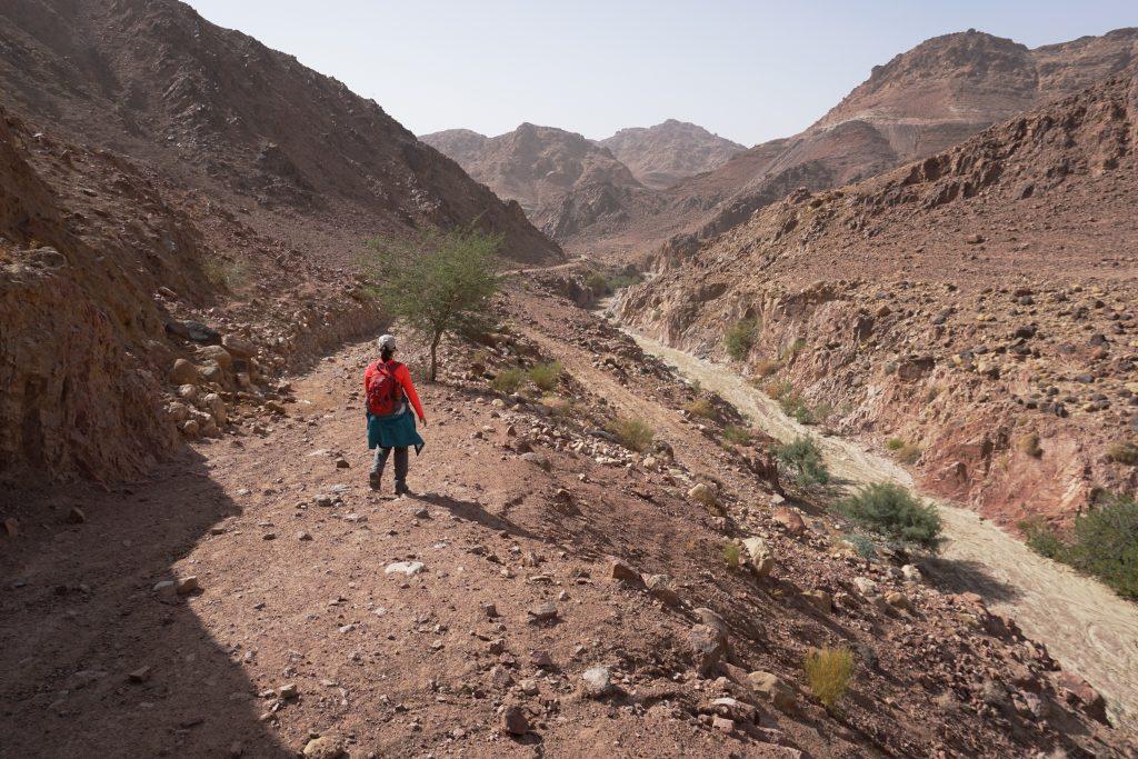 Trekking Wadi Dana, Reserva de Dana