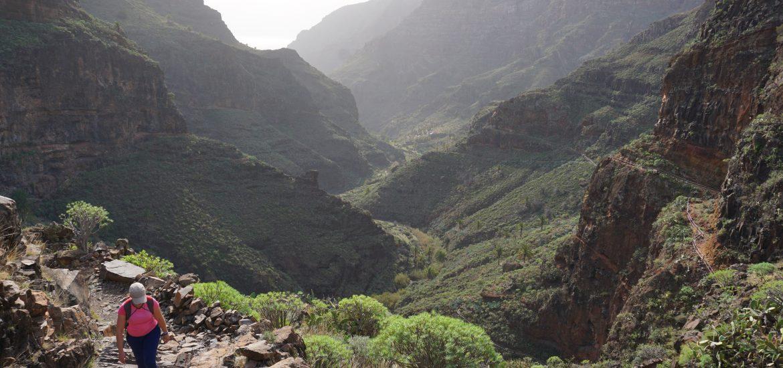 Barrancos de Guarimiar y Benchijigua