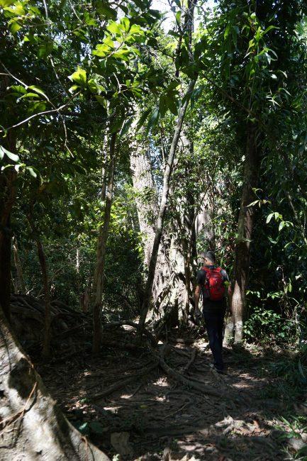 Kbal Spean, río de las 1000 lingas