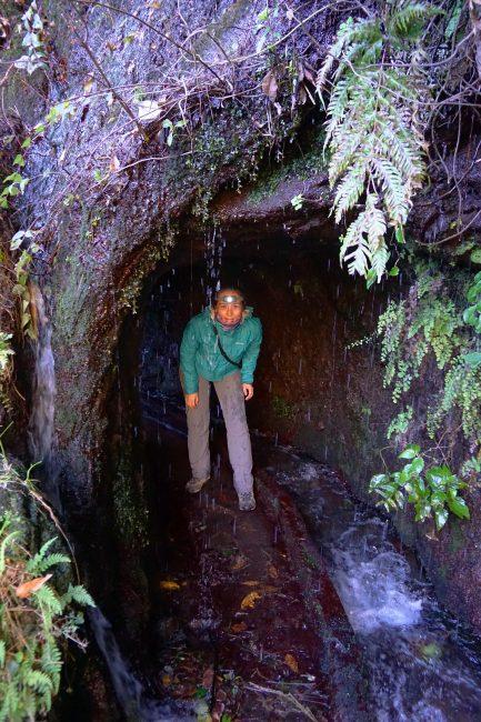 Cruzando túneles en el PR LP 06. Marcos y Cordero – Los Tilos, La Palma.