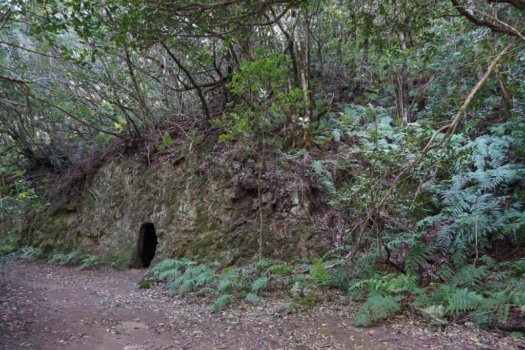 Cuevas del Sendero de El Pijaral (Bosque encantado), Tenerife