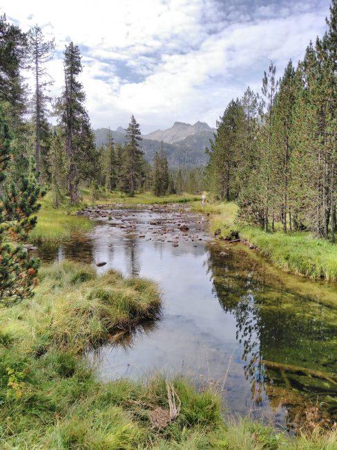 Pirineos, bosques camino del Circo de Colomers