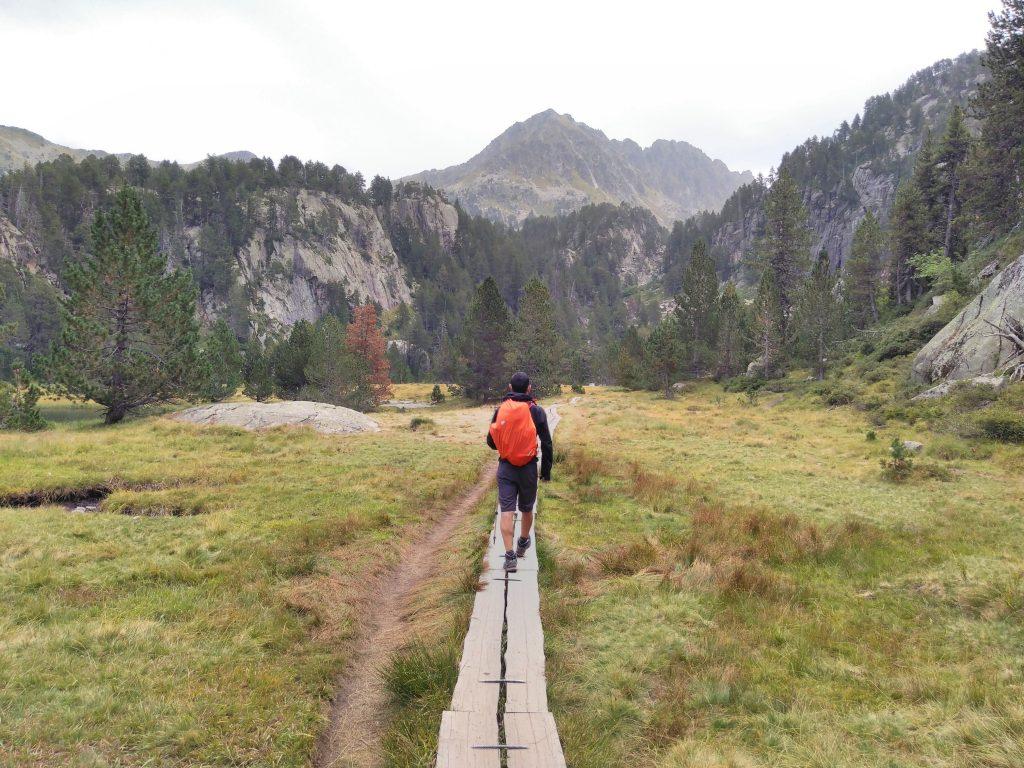 Pirineos, praderas camino del Circo de Colomers