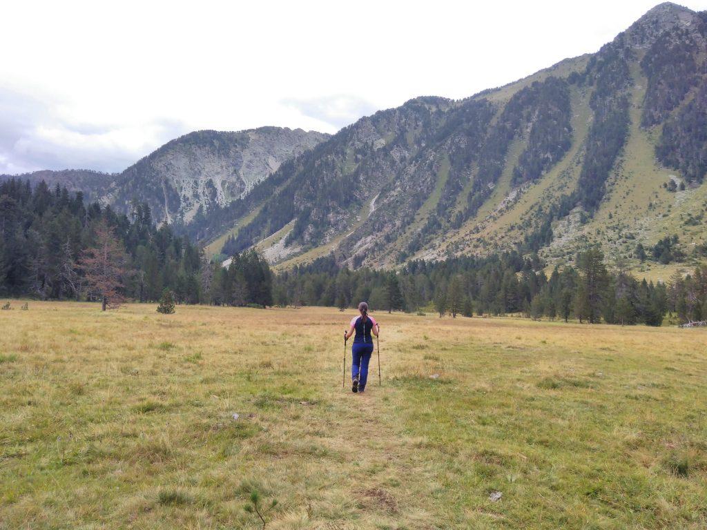 Pirineos, pradera en el camino de vuelta del Circo de Colomers
