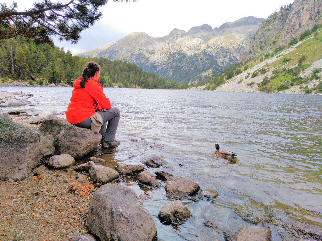 Pirineos, Estany Llong