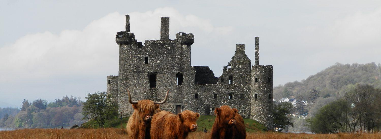 Vaquitas en Kilchurn Castle