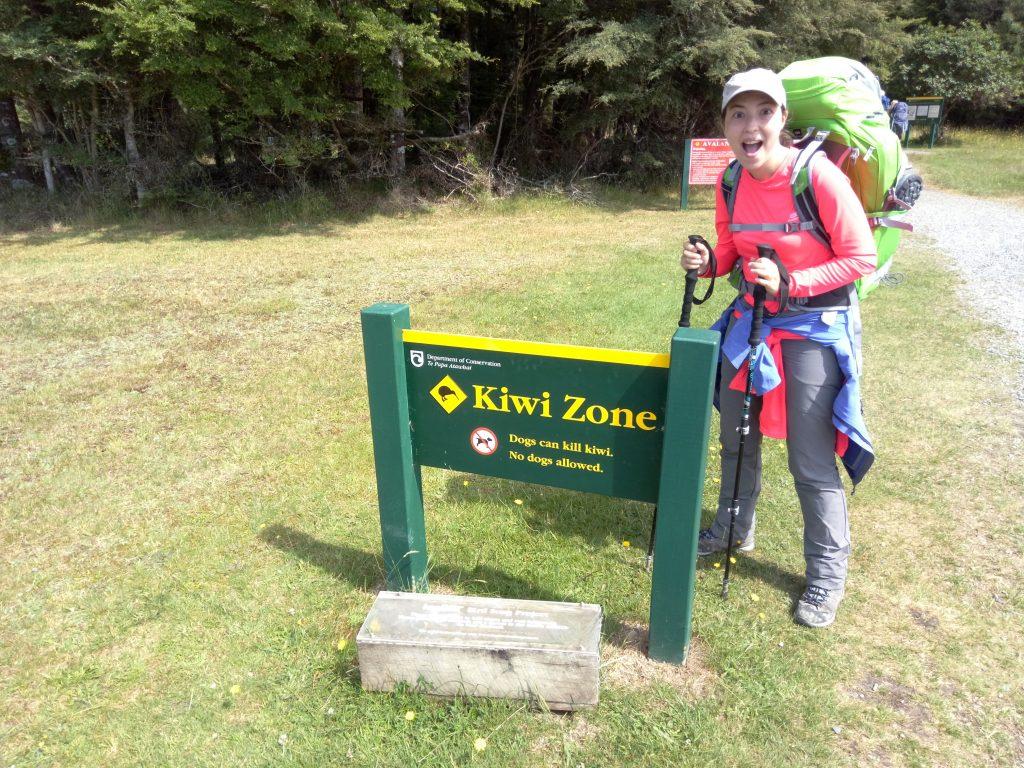 En busca de kiwis en el Kepler Track