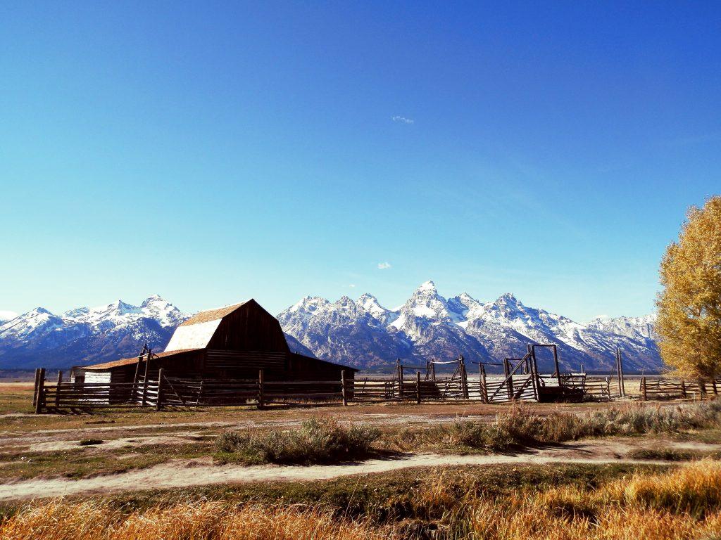 EEUU Oeste Grand Teton