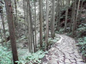 Japón Ruta Nakasendo