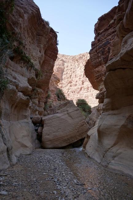 Trekking en Wadi Ghuweir, Reserva de Dana