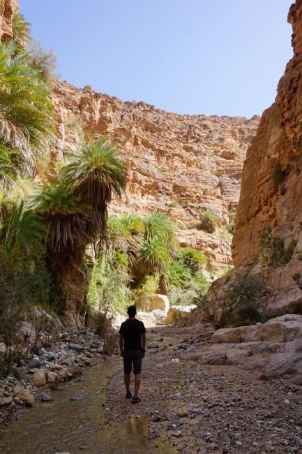 Wadi Ghuweir, Reserva de Dana