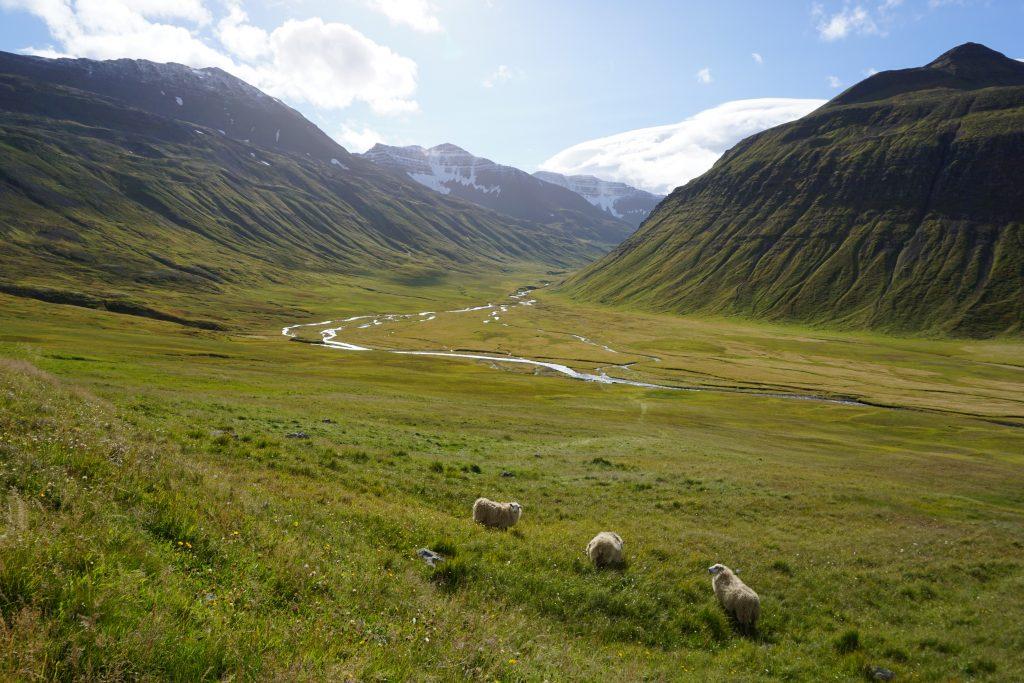 Península de Trollaskagi