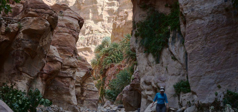 Trekking Wadi Ghuweir, Reserva de Dana