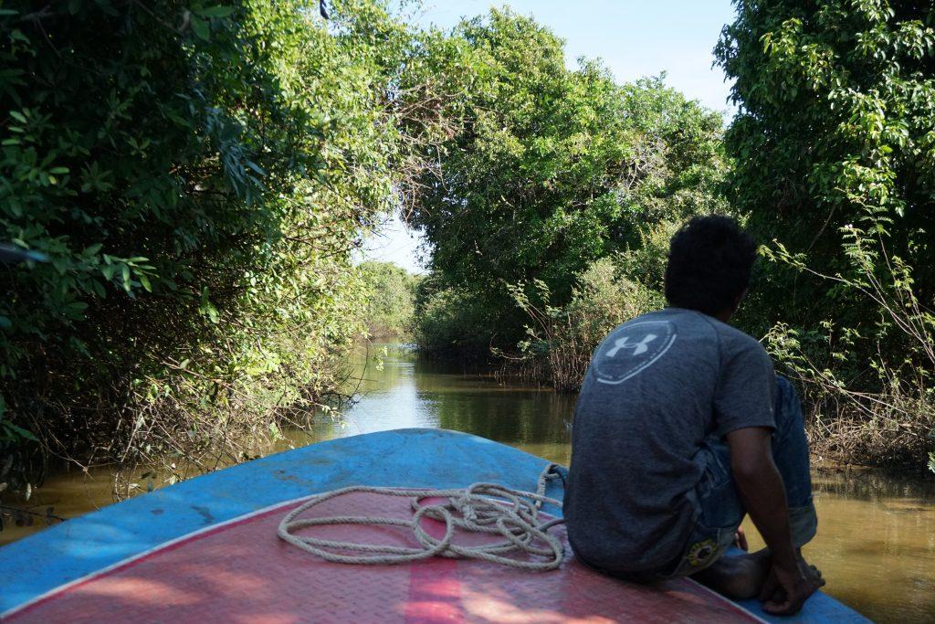 Atravesando bosques inundados en el Tonle Sap, Camboya