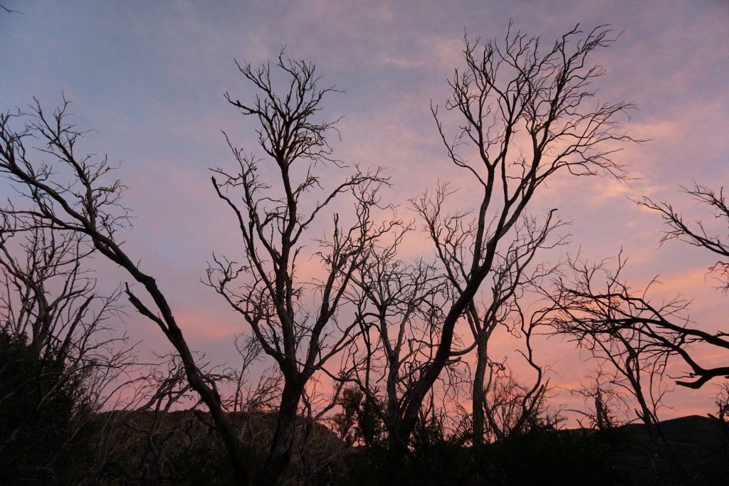 Puesta de sol en Garajonay, La Gomera