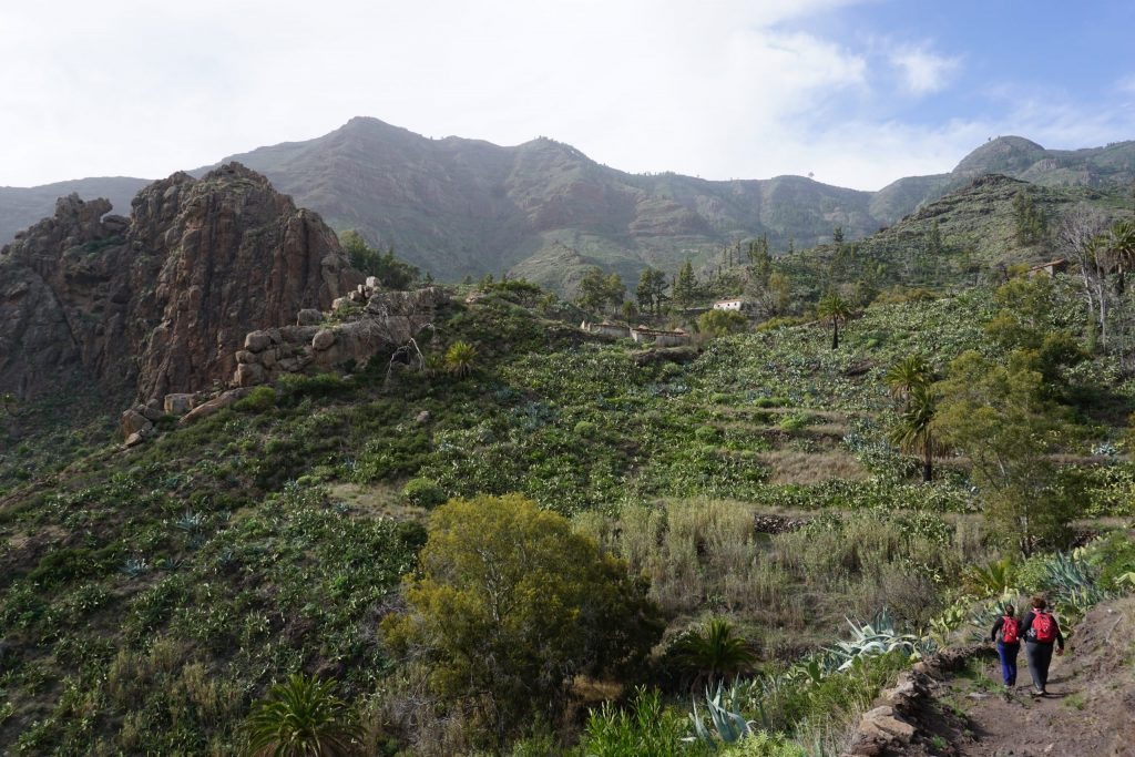 Barranco de Benchijigua, Sendero de los barrancos de Guarimiar y Benchijigua