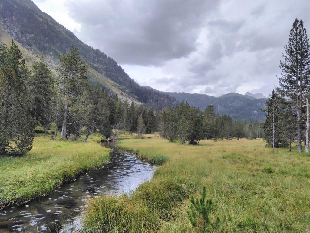 Pirineos, pradera en el inicio de la ruta al Circo de Colomers